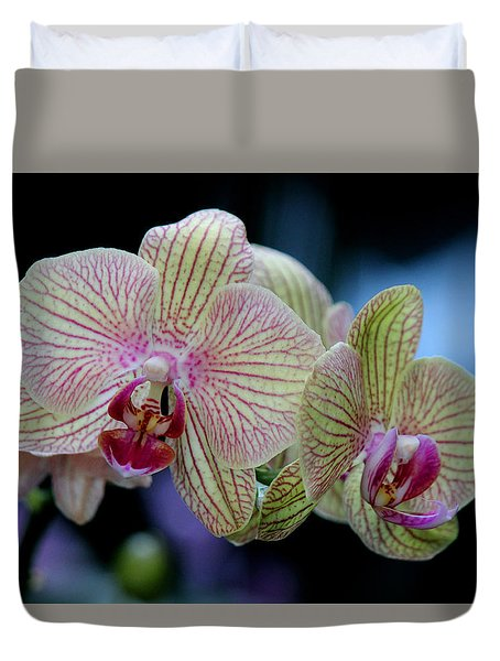 Duvet Cover featuring the photograph Almightily by Silke Brubaker