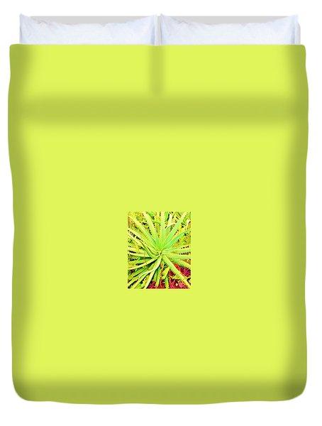 Aloha Aloe In Puna In Lime Duvet Cover