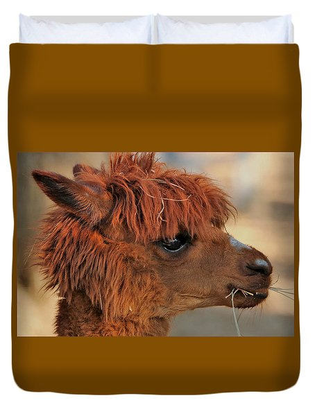Alpaca Portrait Duvet Cover by Sheila Brown