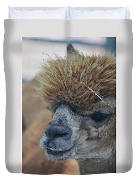 Duvet Cover featuring the photograph Alpaca Portrait by Vadim Levin