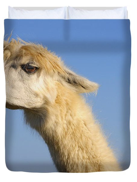 Duvet Cover featuring the photograph Alpaca by Skip Hunt