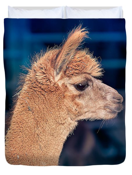 Alpaca Wants To Meet You Duvet Cover by TC Morgan