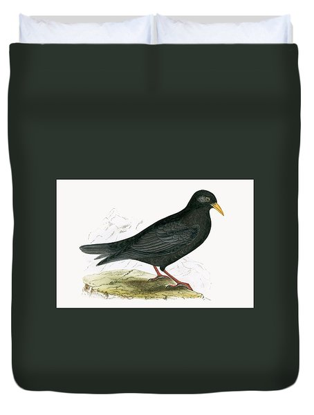 Alpine Chough Duvet Cover by English School