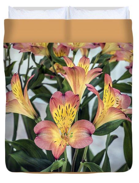 Alstroemeria Blossoms Duvet Cover