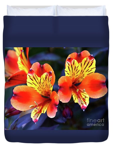 Alstroemeria Indian Summer Duvet Cover by Stephen Melia