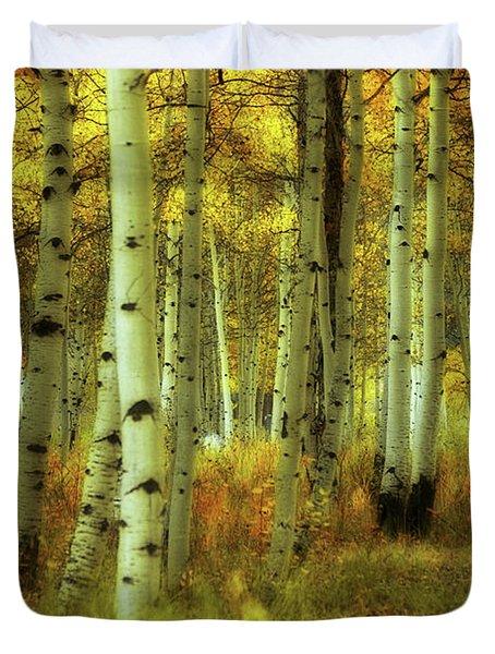 Alvarado Autumn 1 Duvet Cover