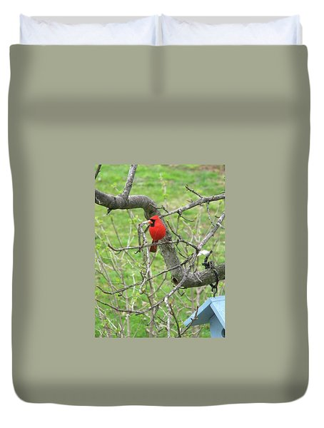 Always With Us -cardinals Duvet Cover