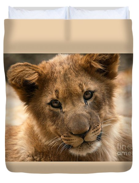 Duvet Cover featuring the photograph Am I Cute? by Christine Sponchia