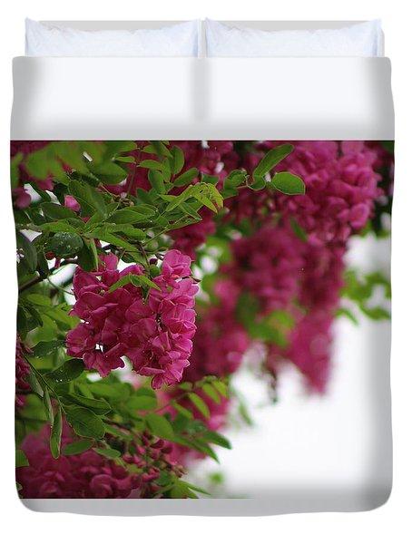 Amaranth Pink Flowering Locust Tree In Spring Rain Duvet Cover