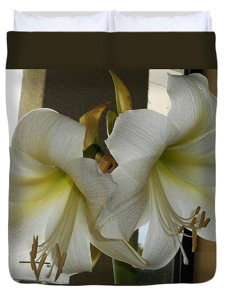 Amaryllis 1 Duvet Cover