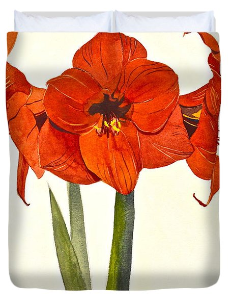 Amaryllis- Posthumously Presented Paintings Of Sachi Spohn  Duvet Cover