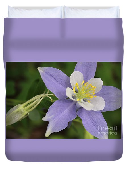 Amazing Colorado Columbine Duvet Cover