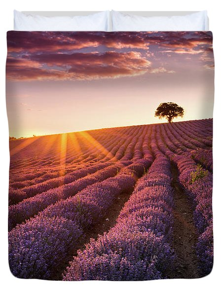 Amazing Lavender Field At Sunset Duvet Cover by Evgeni Dinev