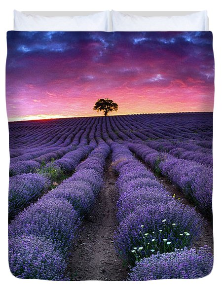 Amazing Lavender Field With A Tree Duvet Cover by Evgeni Dinev