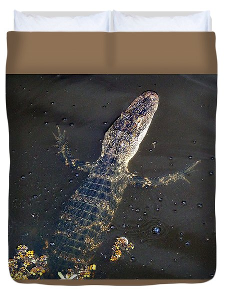 American Alligator 016 Duvet Cover