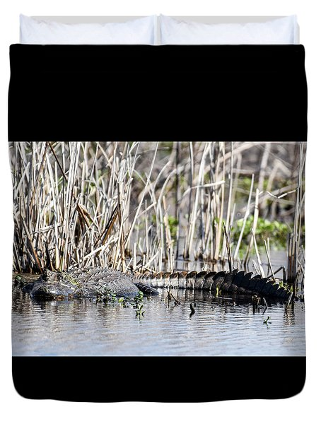Duvet Cover featuring the photograph American Alligator by Gary Wightman