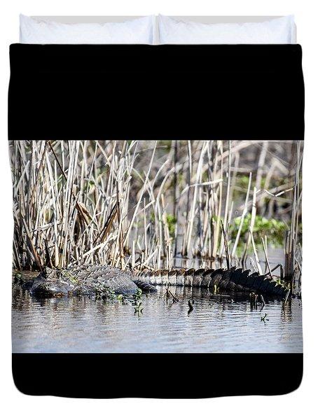 American Alligator Duvet Cover