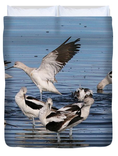American Avocet's Taking A Break Duvet Cover