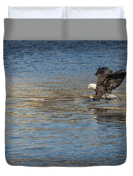 Duvet Cover featuring the photograph American Bald Eagle 2017-10 by Thomas Young