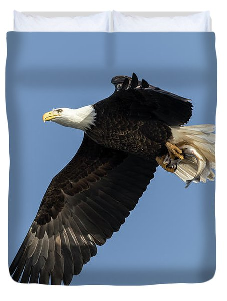 Duvet Cover featuring the photograph American Bald Eagle 2017-4 by Thomas Young
