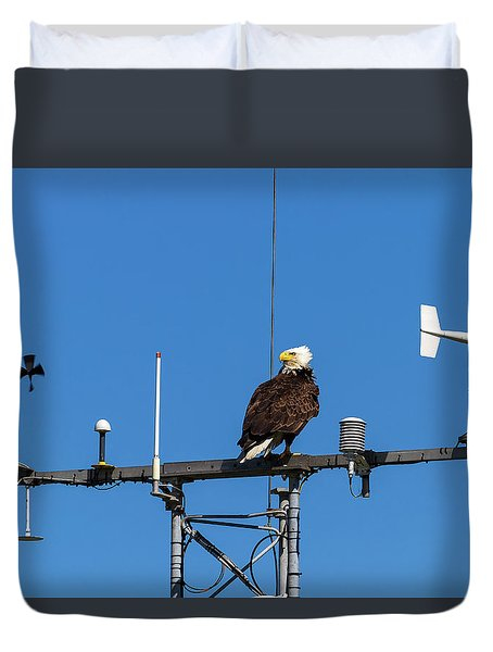 American Bald Eagle Perched On Communication Tower Duvet Cover by David Gn