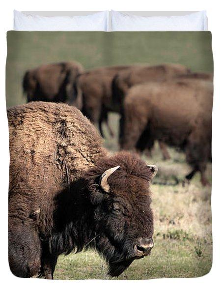 American Bison 5 Duvet Cover