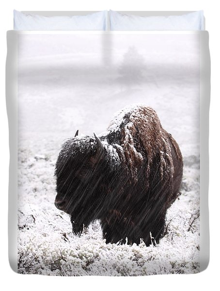 Duvet Cover featuring the photograph American Bison In Snowstorm by Max Allen