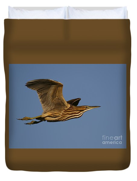 American Bittern Flight Duvet Cover by Myrna Bradshaw