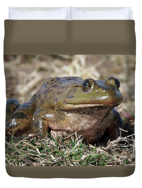 Duvet Cover featuring the photograph American Bullfrog by Nikolyn McDonald