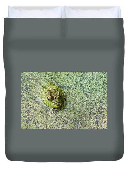 American Bullfrog Duvet Cover by Sean Griffin