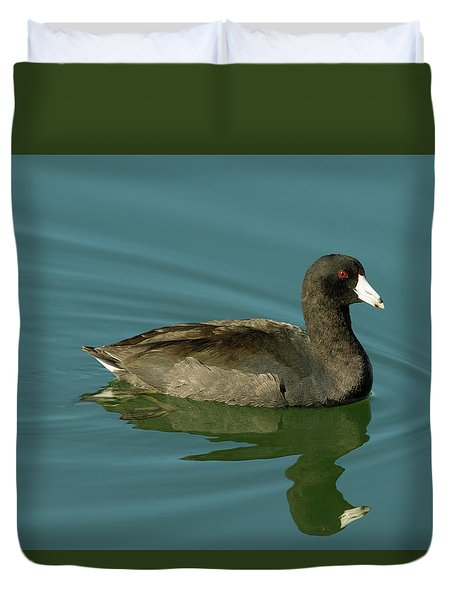 American Coot Duvet Cover