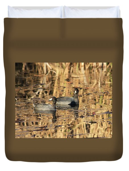 Duvet Cover featuring the photograph American Coots by Jerry Battle