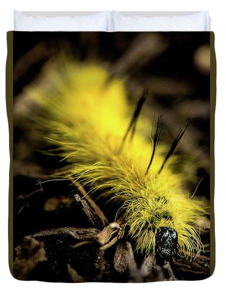 Duvet Cover featuring the photograph American Dagger Moth Caterpillar by Onyonet  Photo Studios