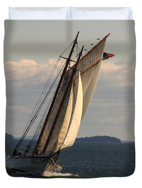American Eagle In A Good Wind Duvet Cover