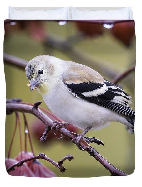 American Goldfinch In The Rain Duvet Cover