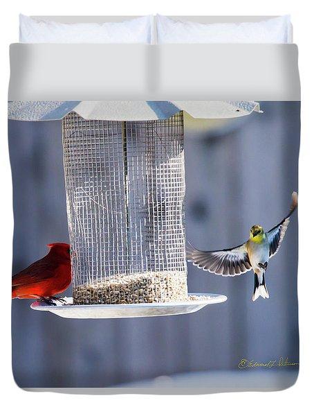 American Goldfinch Inbound Duvet Cover