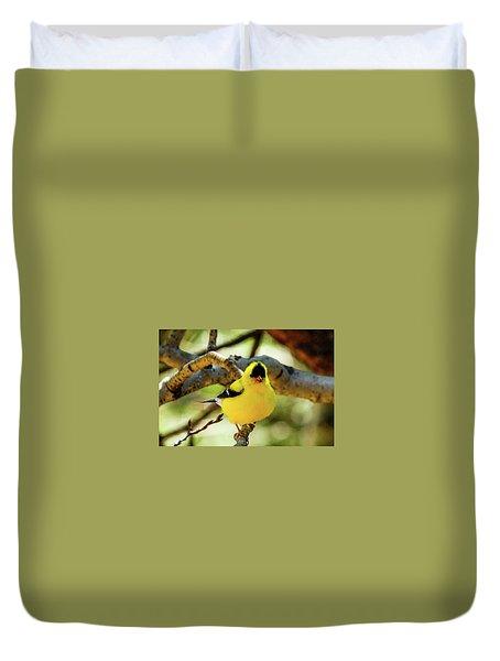 American Goldfinch On Aspen Duvet Cover