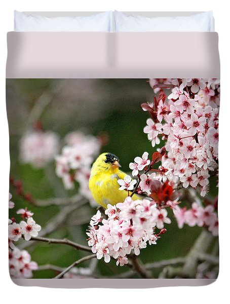 American Goldfinch Duvet Cover by Trina  Ansel