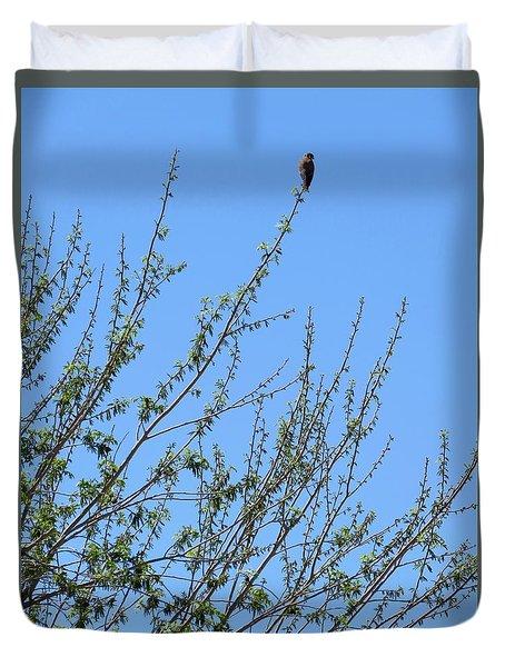 American Kestrel Atop Pecan Tree Duvet Cover