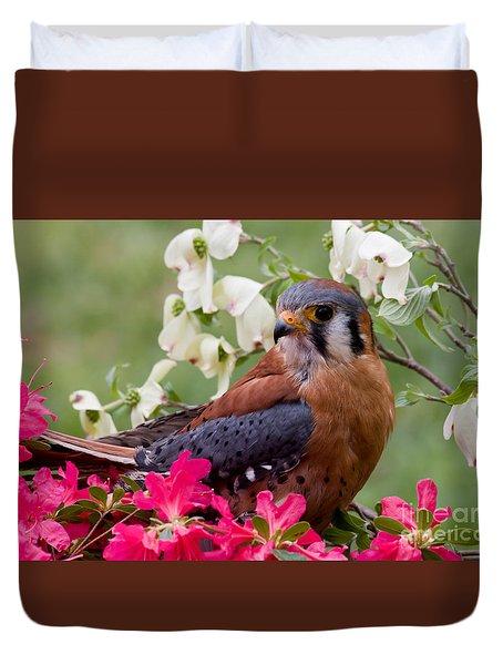 American Kestrel In The Springtime Duvet Cover