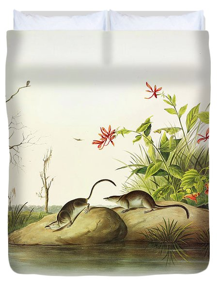 American Marsh-shrew Duvet Cover