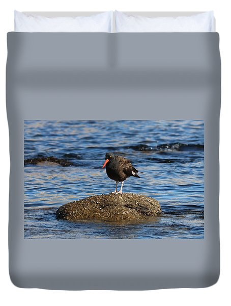 Duvet Cover featuring the photograph American Oystercatcher - 2 by Christy Pooschke