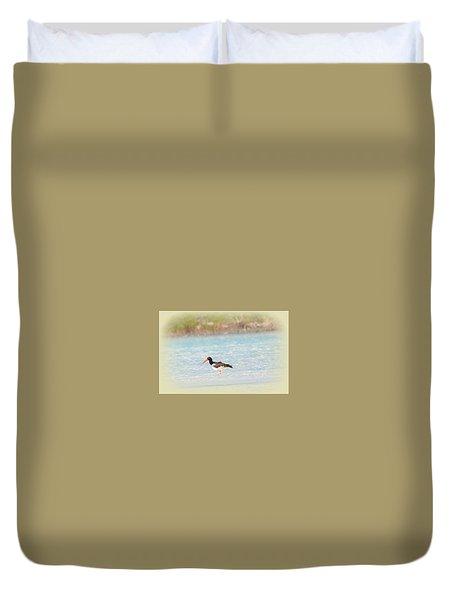 American Oystercatcher Duvet Cover