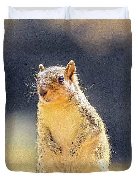 American Red Squirrel Duvet Cover
