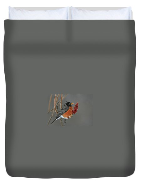 American Robin On Sumac Duvet Cover