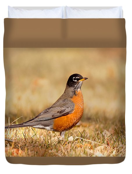 Duvet Cover featuring the photograph American Robin by Ram Vasudev