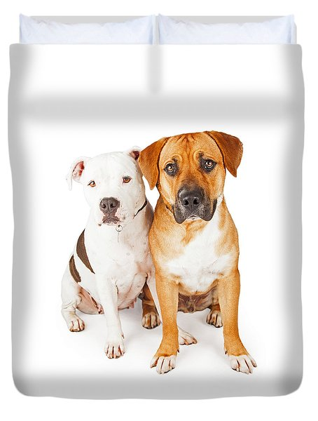 American Staffordshire And Large Mixed Breed Dogs Sitting Togeth Duvet Cover