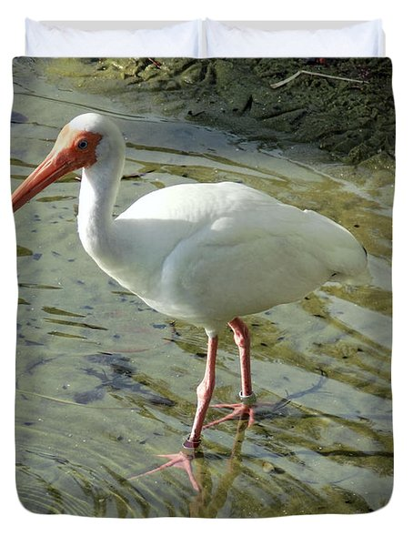 American White Ibis Duvet Cover