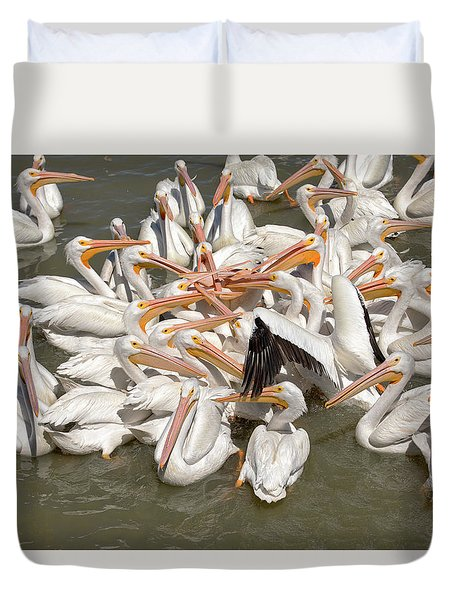 American White Pelicans Duvet Cover by Eunice Gibb