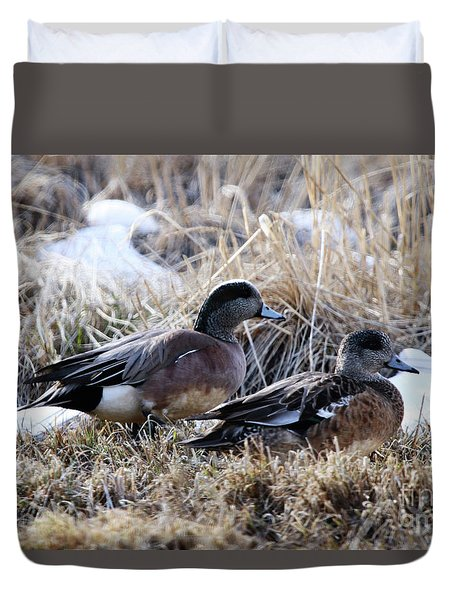 American Wigeon Mated Pair Duvet Cover